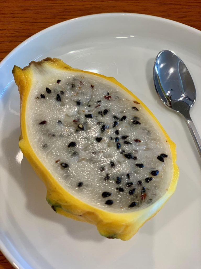 Dragon Fruit | A Casual Lunch with Darren Chin | Food For Thought
