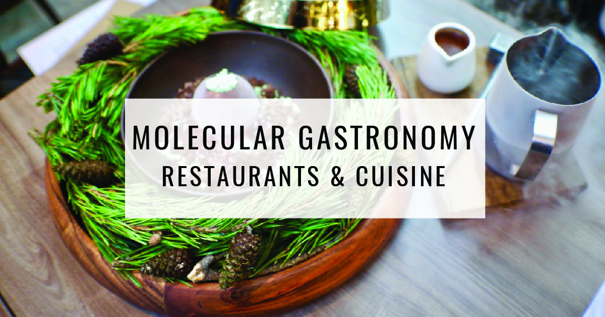 Molecular Gastonomy Restaurants & Cuisine Title Card | Food For Thought