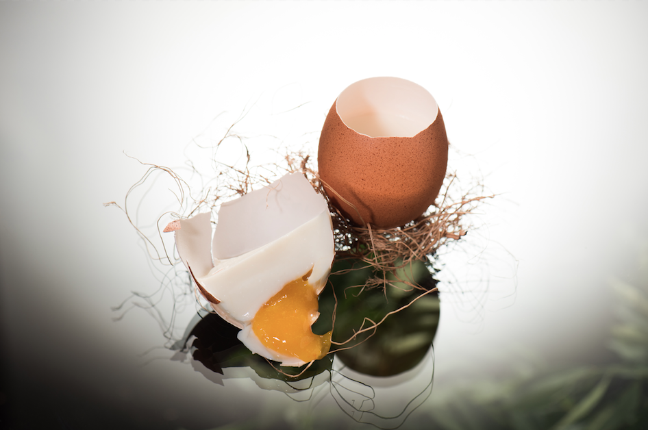 The Egg | Enfin by James Won | Food For Thought