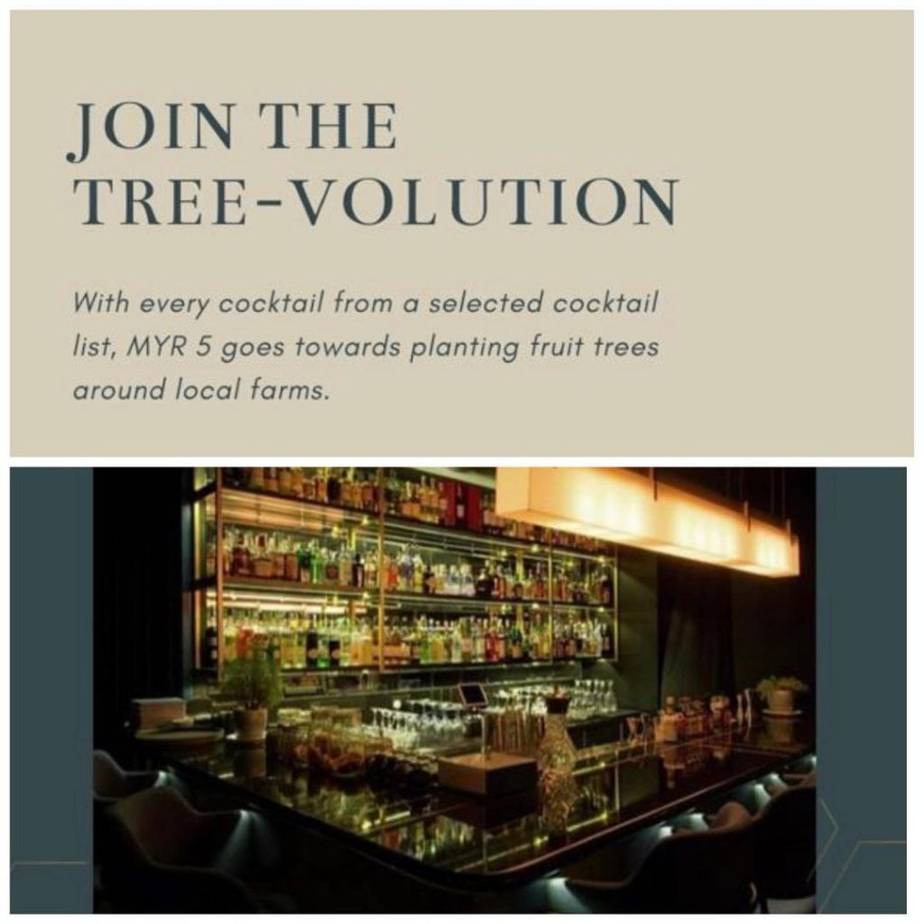 Three X Co. | Tree-Volution | Food For Thought