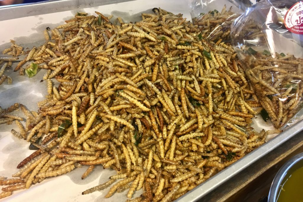 Tua Mai Tod | Fried Silkworms | Chiang Mai Street Food | Food For Thought